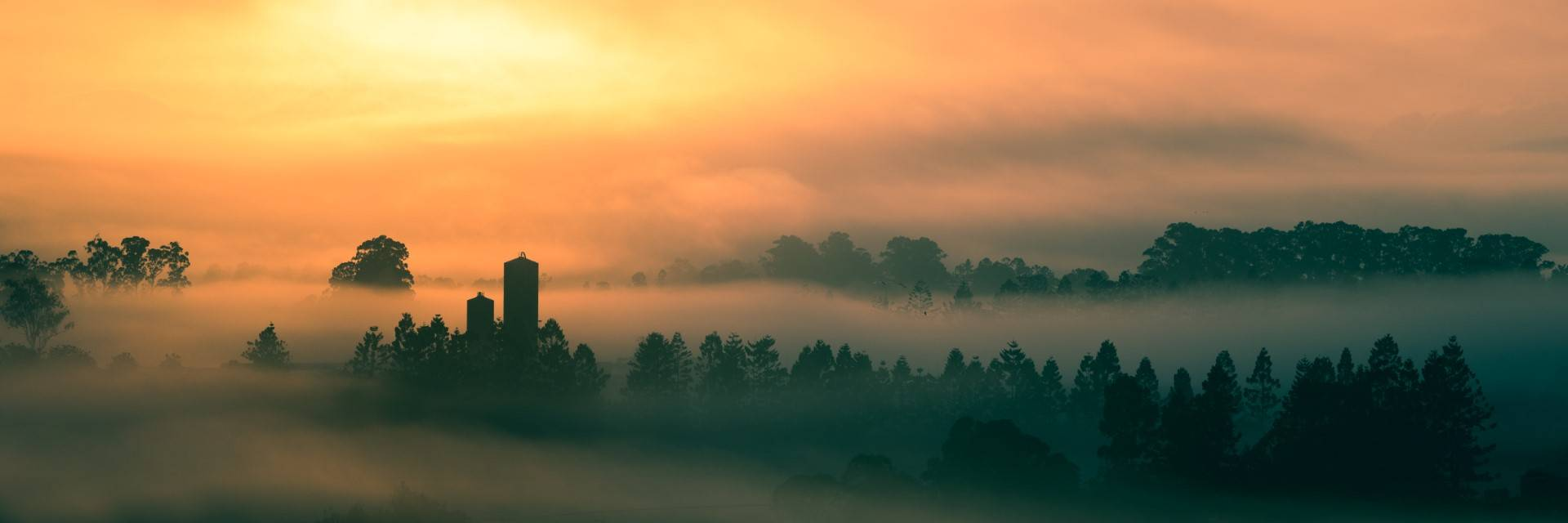 Gallo's Dairy in the morning mist - Brendan MacRae Photography